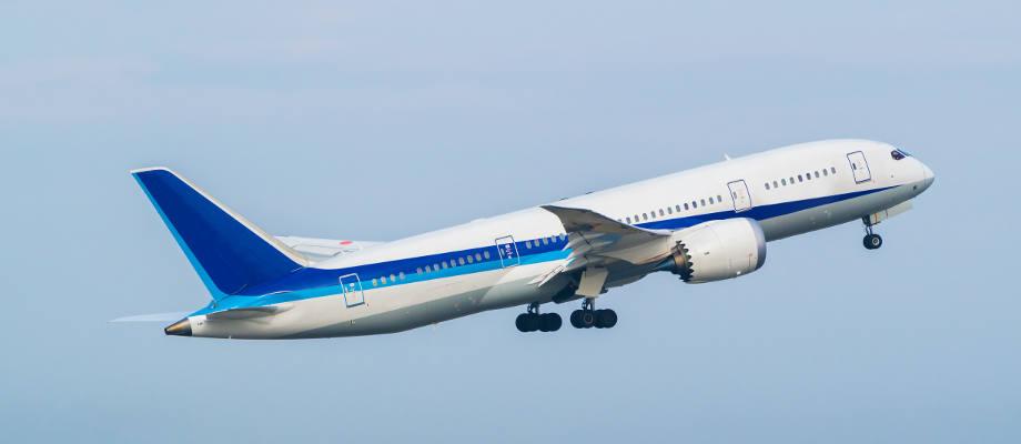 Boeing 787-8 Flight Image